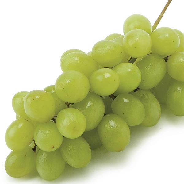 White Seedless Grapes Organic