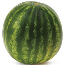 Small Red Seedless Watermelon