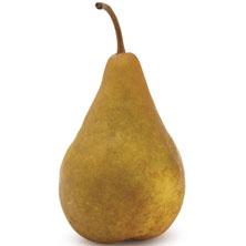 Bosc Pears Large