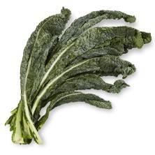 Organic Kale Lacinato / Tuscan
