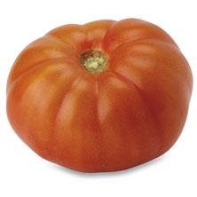 Ugly Ripe Tomato