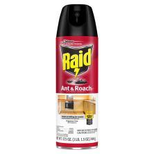 Raid Ant & Roach Killer 26, Fragrance Free