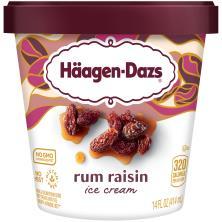 Haagen Dazs Ice Cream, Rum Raisin