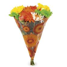 Floral Bouquet, Sizzler