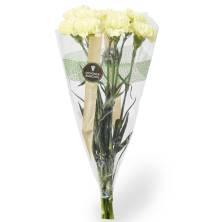 Fancy Carnation Bunch