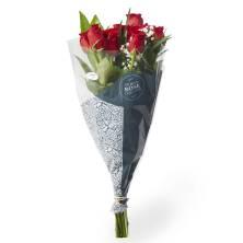 One Dozen Roses Premium Red