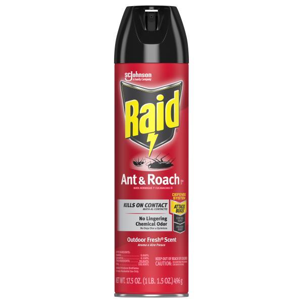 Raid Ant & Roach Killer 17, Outdoor Fresh