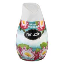 Renuzit Air Freshener, Gel, After the Rain