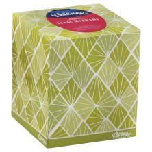 Kleenex Expressions Tissue, White, 2-Ply