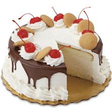 8 In Premium Vanilla Ice Cream Cake
