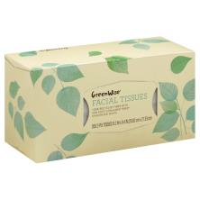 GreenWise Facial Tissues, Unscented, White, 2-Ply