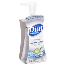 Dial Complete Hand Wash, Soothing White Tea, Foaming Antibacterial