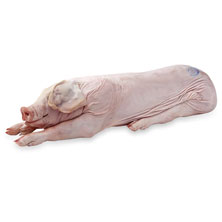 Whole Roasting Pig 50-100 Pounds Average Weight, Sold Frozen