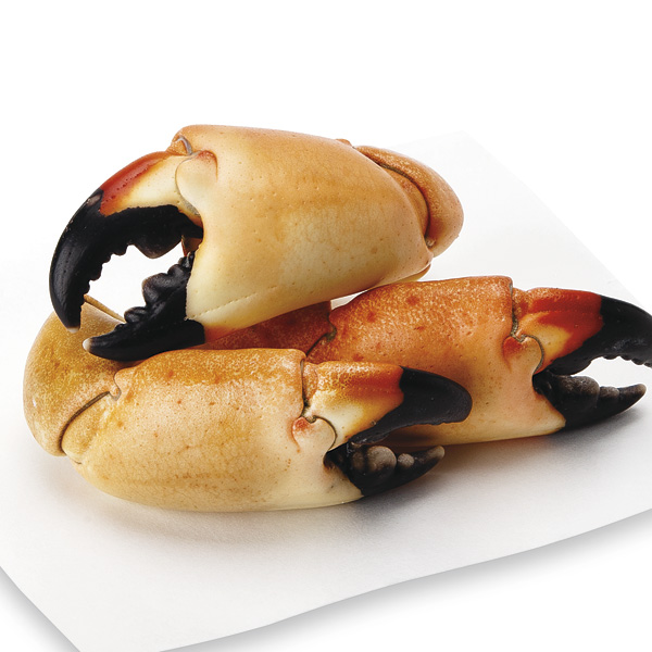 Stone Crab Claws, Large, 4 - 6 Claws/Lb, Fresh, Wild