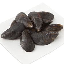 GreenWise Mussels, Live Farmed, Sustainably Sourced