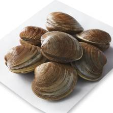 Cherrystone Clams, Live, Wild or Farm Raised