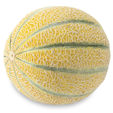Golden Kiss Melon