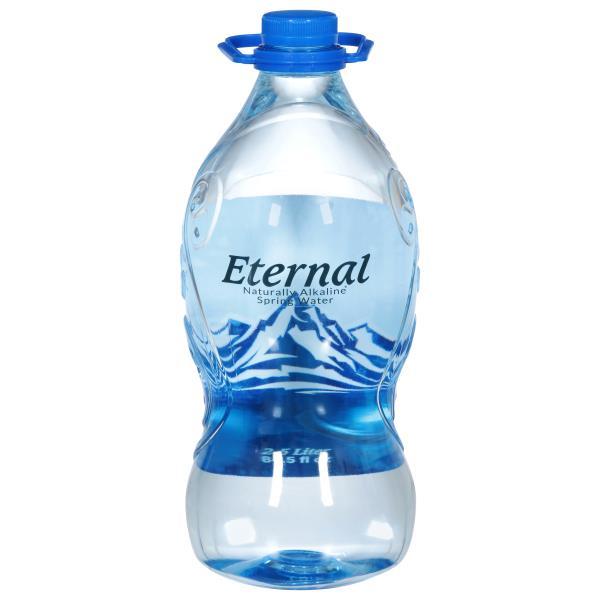 Eternal Alkaline Water Water Ionizer