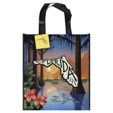 Publix Bag, Florida